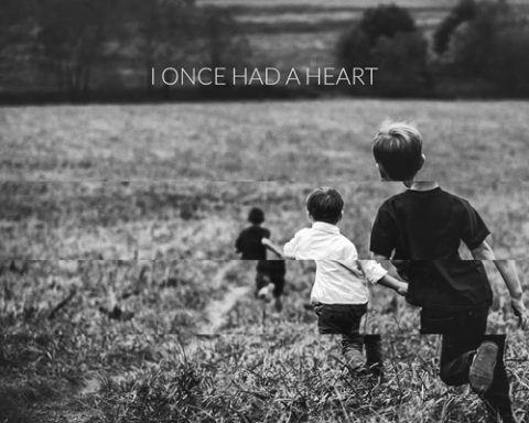 Nomy - I Once Had A Heart